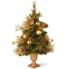 Plantable Christmas Trees For Sale by Potted Christmas Trees Christmas Decorations The Home Depot