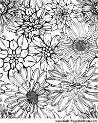 Fresh Adult Coloring Pages Flowers 51 For Free Colouring With