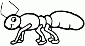 Download Ant Coloring Pages