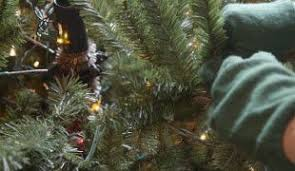 Troubleshooting Pre Lit Christmas Tree Lights by Shaping Your Artificial Christmas Tree Instruction Balsam Hill
