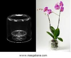 cache pot transparent pour orchidée bricolages montages