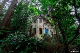 100 House In Forest The Royal An Abandoned Offbeat Japan