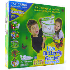 Live Butterfly Garden Hatching Kit from Insect Lore