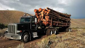 Welcome To MTFirewood.com - Montana Firewood And Log Truck Service ... Mt Garfield Trucking About Us Lunderby Llc June 2 Butte Mtcokeville Wy Beam Bros Crawford Va Rays Truck Photos 24 Missoula To Cut Bank Mt Jim Palmer On Twitter Whoever Said That Vans Arent Cool Billings Towing 406 2482801 Repair I90 Montana Part 5 Dead Dozens Hurt When School Bus Collides With Dump Truck In Home Mtpleasanttrfcom Accessible Baker Transportation Seattlegov
