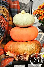 Myers Pumpkin Patch Facebook by 8 Tips For Keeping Pumpkins Fresh