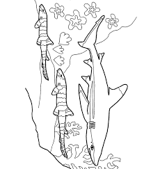 Sharkboy And Lavagirl Coloring Pages Chuck Com