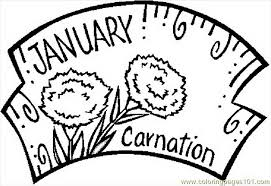 Free Printable Coloring Page January Carnation Natural World 505112 Pages For 2015