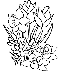 Coloring PagesGorgeous Flowers Page Pages