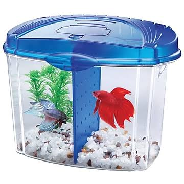Aqueon Betta Bowl Aquarium Kit - Blue