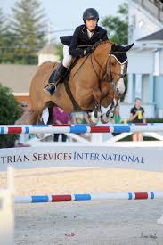 Hunters, Jumpers, Equitation   EQUESTRIAN ✦   Pinterest   Hunter ... Autumn Hills Farm Pin By 21 Days Diet Plan On Horses Pinterest Horse Hunter Hunters Jumpers Equitation Equestrian Hillmar Farm Welcome Beckett Run Inc About Us News Alabama Association Corrstone Huntjumper Traing Barn In Modesto And Saratoga Holiday Giving Equestrian Style The Peeps Foundation Is The 744 Best Hunter Jumpershow Jumping Images Florida Jumper Show Barns Med Kennedy Grove Stables Tommi Clark Chosenbrook Show Jumper Sale
