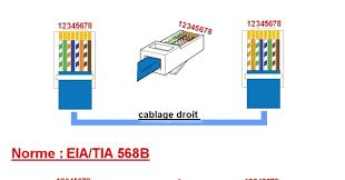schéma de branchement prise rj45 téléphone câblage les différents