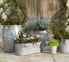 Who Knew That Those Seemingly Unimpressive Looking Tin Buckets Could Double Up As Rustic Flower Pots Not Only Look Good But Also Support The Growth Of