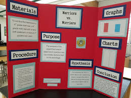 Science Fair Display Board Example 2