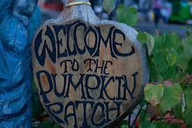 Flower Mound Pumpkin Patch Flower Mound Tx by The Flower Mound Pumpkin Patch A True Halloween Tradition U2013 The Talon