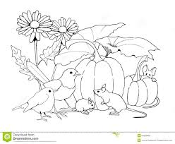 Panda Pumpkin Designs by Pumpkin Patch Coloring Pages Pumpkin Patch Coloring Page Clipart