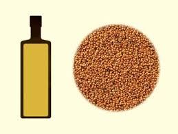 huile de cameline cuisine huile de éline fiche détaillée