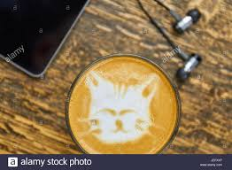 Cute Cat Latte Art