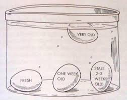 Bad Eggs Do They Float Or Sink by How To Test The Age Of An Egg Lifehacks