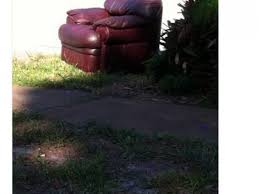updated craigslist freebies in clearwater and pinellas