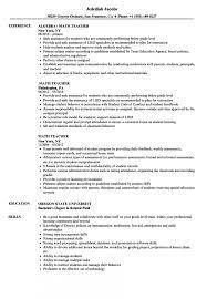 Math Teacher Resume Samples Velvet Jobs Sample As Image File Examples For Teachers Changing Careers