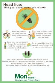 Tips for treating and preventing head lice
