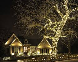 Wrap Trees Around Your Venue With Mini Lights Adds Extra