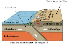 Sea Floor Spreading Subduction Animation by Plate Tectonics Earthquakes U0026 Volcanoes Maggie U0027s Science Connection