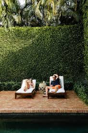Best 25+ Ivy Wall Ideas On Pinterest | Garden Bedroom, Jasmine ... Ideas For Outdoor Privacy Screens Green Grass Extra Wide Back Garden Ideas 2833 Hostelgardennet 11 Ways To Create A More Relaxing Backyard Patio Spanish Style Cover Designs Choosing Bold Color Your Shed Old Brand New The Growers Daughter Front Yard Landscape Ask The Expert How Use Plants In City Garden Audzipan Anthology Pergola Oakley Our Land Organics With Trellis Better Homes And Gardens Best 25 Cheap Fence On Pinterest Panels