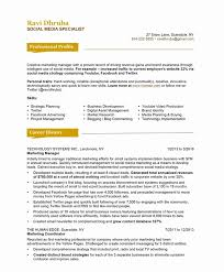 Resume Format For Marketing Profile Awesome Media Examples Of Resumes