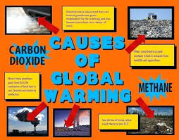 Science Project Poster Layout Make A Fair Ideas Causes Of Global Warming