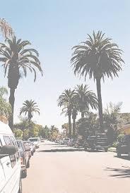 1024x768px California Palm Trees Wallpaper