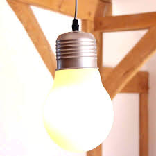 l shades that fit on bulb light ceiling species for a