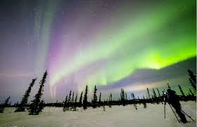 How can you see the Northern Lights