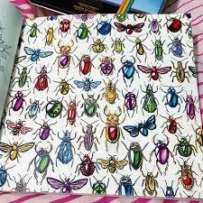 Secret Garden Adult ColoringColoring BooksColoring