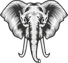 Elephant Head Illustration Tattoo Vector