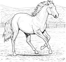 Horse Color Pages Free Printable Coloring For Kids To Download