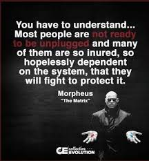 Tortilla Curtain Quotes Racism by 33 Best Free Your Mind Matrix Quotes Images On Pinterest Books