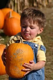 Nh Pumpkin Festival Laconia Nh by List Of New Hampshire Pumpkin Festivals