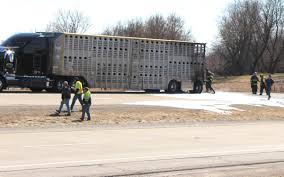 Trailer Fire Kills Cow, Closes Highway 151 In Dodge County ... Overturned Cow Trailer Multiple Car Accidents Bring Birminghams Cow Truckin 2013 Youtube 03549 116 Scania Rseries Cattle Transport Truck With Action Toys Amazoncom Toy State Road Rippers Rumble Animal Popup Trailer Fire Kills Closes Highway 151 In Dodge County Jgcreatives Portfolio Of Jonathan Greer The Happy Bruder Transportation Including 1 Only 3380 Dayun 42 Dry Box Stake Cheap Trucks Buy Trucks 2 Sweet Ice Cream Boulder Food Roaming Hunger Say Farewell To Tipping Creamerys Eater Austin