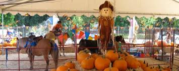 Best Pumpkin Patch Torrance by Upcoming Events And Things To Do In L A With Kids L A Parent