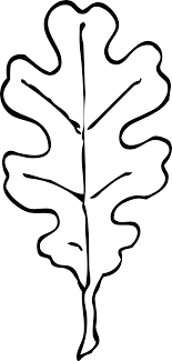Black And White Leaf Border Clipart Free Clipart