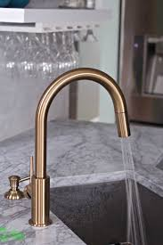 delta gold trinsic kitchen faucet chic and super functional in