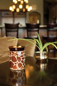 Pumpkin Scentsy Warmer 2014 by 110 Best Scentsy Y U0027all Images On Pinterest Scentsy Fragrance