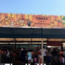 Tanaka Farms Pumpkin Patch Directions by Tanaka Farms 2377 Photos U0026 602 Reviews Fruits U0026 Veggies 5380