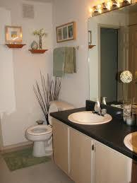 Bathroom Decorating Ideas Apartment Amazing Small More Interior