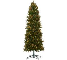 7ft Christmas Tree With Lights by 7 Ft To 7 1 2 Ft U2014 Christmas Trees U2014 Christmas U2014 Holiday U2014 For The