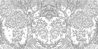 An Illustration From Johanna Basfords Enchanted Forest Photo Basford