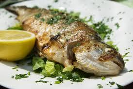 recherche recette de cuisine résultat de votre recherche recette de cuisine gastronomique