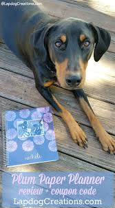 Lapdog Creations: Plum Paper Planner + Coupon Plum Paper Homeschool Planner Giveaway Coupon Code Aug 2017 Review Coupon Code Staying Organized With Oh Hello Stationery Co A Getting With A Teacher Wife Mommy Planner Review Coupon Code For Plum Paper 15 Best Planners Moms Students And Professionals Shaindels Shenigans Paper 2018 Purple Digital Background Scrapbooking No1233 Save Money Use Codes Ultimate Comparison Erin Condren Life Versus Promo Deal We Provide All Kind Of Promo Codes Coupons
