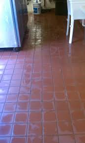 floor cleaning water damage damage mold removal service